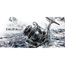 Mulinello Caldia LT   2500 D - 3000 DC - Daiwa -